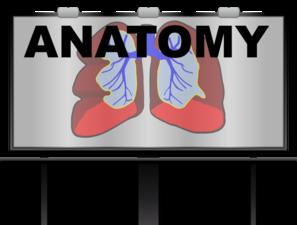 MANAGEMENT QUOTA MD ANATOMY ADMISSION IN KIMS BANGALORE