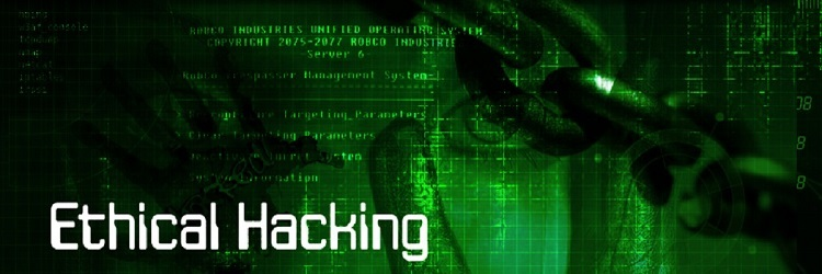 Handson ethical hacking and network defense 2nd edition download